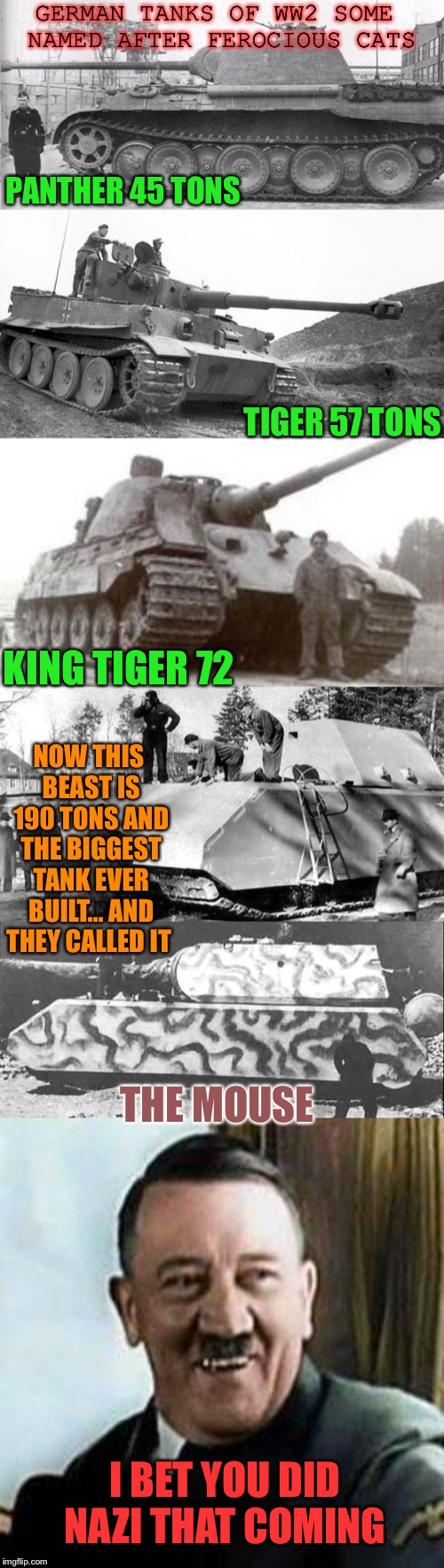 True story bro ! | GERMAN TANKS OF WW2 SOME NAMED AFTER FEROCIOUS CATS PANTHER 45 TONS TIGER 57 TONS KING TIGER 72 NOW THIS BEAST IS 190 TONS AND THE BIGGEST T | image tagged in laughing hitler,subverting expectations worse than rian johnson,ww2 | made w/ Imgflip meme maker