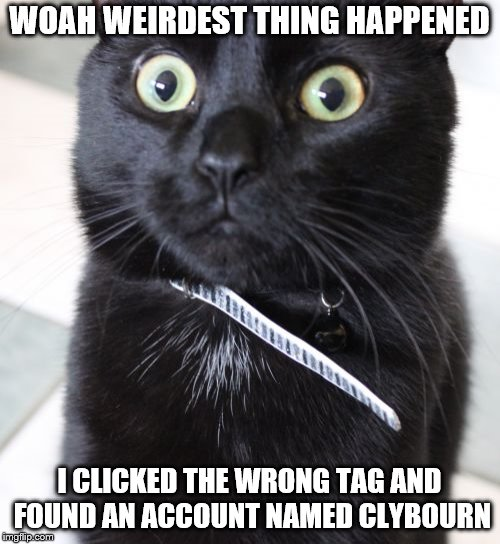 Woah Kitty Meme | WOAH WEIRDEST THING HAPPENED I CLICKED THE WRONG TAG AND FOUND AN ACCOUNT NAMED CLYBOURN | image tagged in memes,woah kitty | made w/ Imgflip meme maker