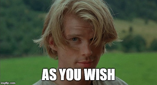 AS YOU WISH | made w/ Imgflip meme maker
