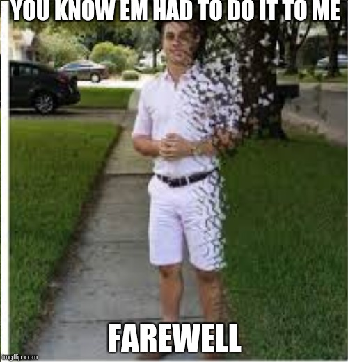 farewell | YOU KNOW EM HAD TO DO IT TO ME FAREWELL | image tagged in infinity war | made w/ Imgflip meme maker