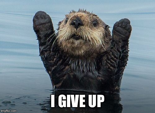 Hands up otter | I GIVE UP | image tagged in hands up otter | made w/ Imgflip meme maker