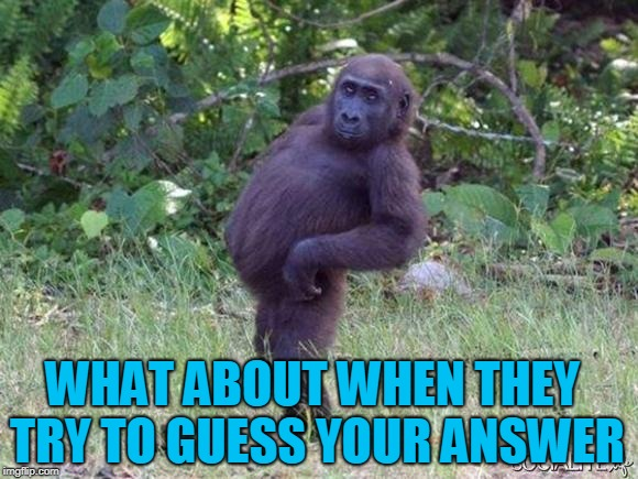 Sassy Monkey | WHAT ABOUT WHEN THEY TRY TO GUESS YOUR ANSWER | image tagged in sassy monkey | made w/ Imgflip meme maker