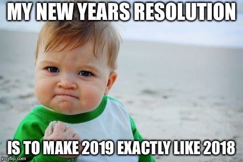 Success Kid Original | MY NEW YEARS RESOLUTION IS TO MAKE 2019 EXACTLY LIKE 2018 | image tagged in memes,success kid original | made w/ Imgflip meme maker