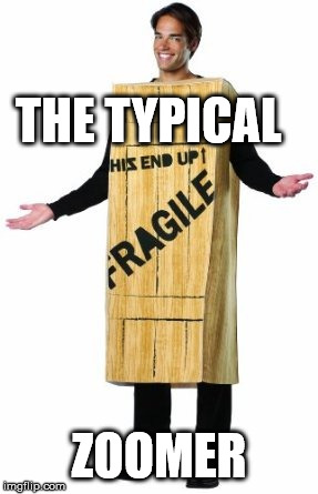 Fragile Man |  THE TYPICAL; ZOOMER | image tagged in fragile man,memes,zoomer,gen z | made w/ Imgflip meme maker