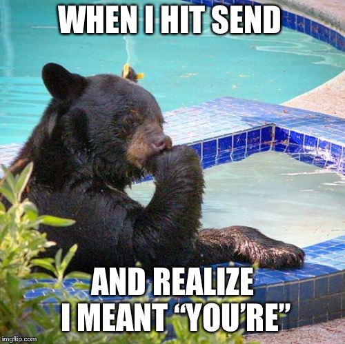"grammar bear | WHEN I HIT SEND AND REALIZE I MEANT ""YOU'RE"" 