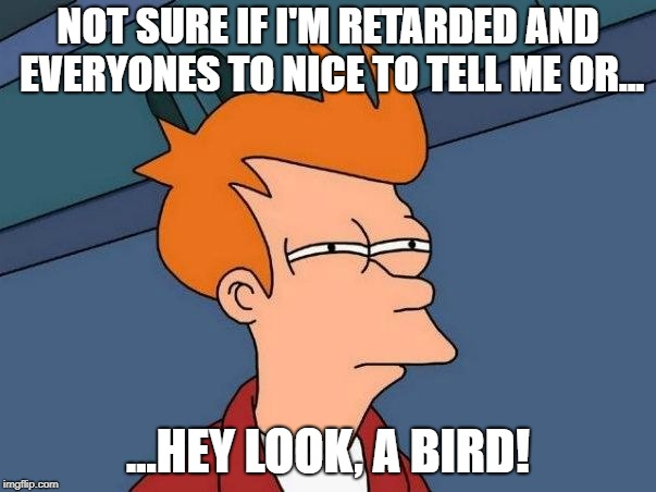 It' a bird! |  NOT SURE IF I'M RETARDED AND EVERYONES TO NICE TO TELL ME OR... ...HEY LOOK, A BIRD! | image tagged in not sure if- fry | made w/ Imgflip meme maker