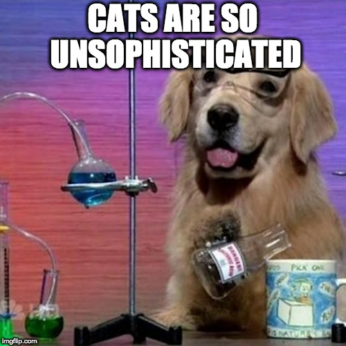 I Have No Idea What I Am Doing Dog Meme | CATS ARE SO UNSOPHISTICATED | image tagged in memes,i have no idea what i am doing dog | made w/ Imgflip meme maker