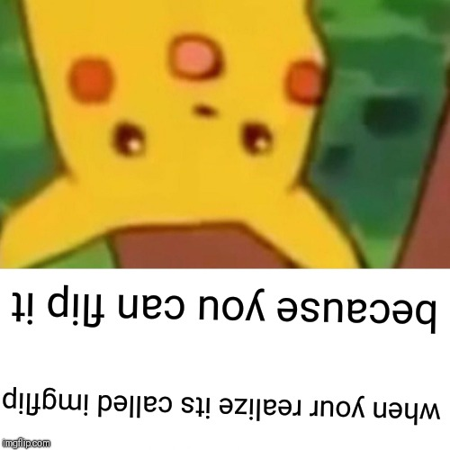 Surprised Pikachu Meme | when your realize its called imgflip because you can flip it | image tagged in memes,surprised pikachu | made w/ Imgflip meme maker