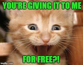 Excited Cat Meme | YOU'RE GIVING IT TO ME FOR FREE?! | image tagged in memes,excited cat | made w/ Imgflip meme maker