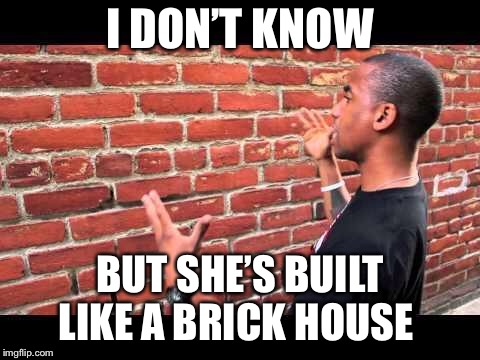 Brick wall guy | I DON'T KNOW BUT SHE'S BUILT LIKE A BRICK HOUSE | image tagged in brick wall guy | made w/ Imgflip meme maker