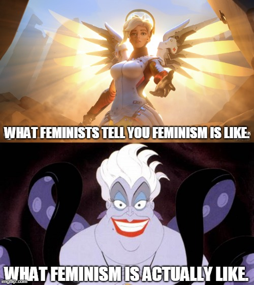 Feminism in a nutshell |  WHAT FEMINISTS TELL YOU FEMINISM IS LIKE. WHAT FEMINISM IS ACTUALLY LIKE. | image tagged in memes,anti-feminism,destruction,truth hurts,feminism is cancer,caution | made w/ Imgflip meme maker
