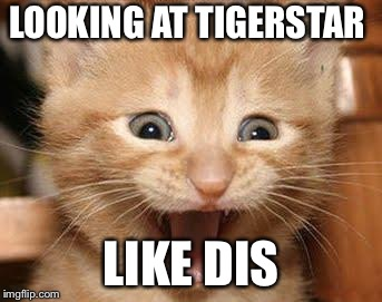Excited Cat | LOOKING AT TIGERSTAR LIKE DIS | image tagged in memes,excited cat | made w/ Imgflip meme maker