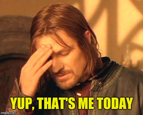 Frustrated Boromir | YUP, THAT'S ME TODAY | image tagged in frustrated boromir | made w/ Imgflip meme maker