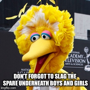 Big Bird Meme | DON'T FORGOT TO SLAG THE SPARE UNDERNEATH BOYS AND GIRLS | image tagged in memes,big bird | made w/ Imgflip meme maker