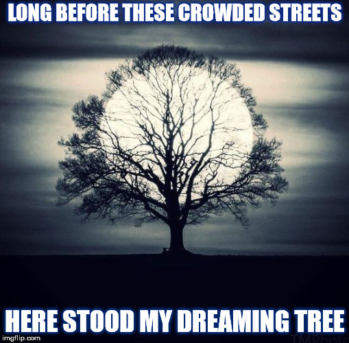 DMB The Dreaming Tree | LONG BEFORE THESE CROWDED STREETS HERE STOOD MY DREAMING TREE | image tagged in dmb,dave matthews band,tree,full moon,the dreaming tree,dream | made w/ Imgflip meme maker