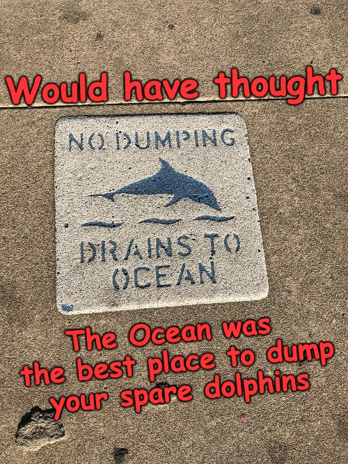 Not in Santa Monica... | Would have thought The Ocean was the best place to dump your spare dolphins | image tagged in dolphins,santa monica,dumping | made w/ Imgflip meme maker
