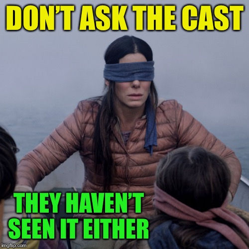 bird box | DON'T ASK THE CAST THEY HAVEN'T SEEN IT EITHER | image tagged in bird box | made w/ Imgflip meme maker