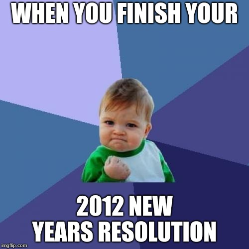 Finally... | WHEN YOU FINISH YOUR 2012 NEW YEARS RESOLUTION | image tagged in memes,success kid,new years resolutions | made w/ Imgflip meme maker