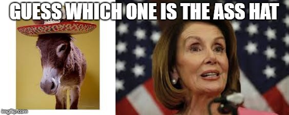 Ass Hat | GUESS WHICH ONE IS THE ASS HAT | image tagged in ass hat,asshat,nancy pelosi,politics,speaker of the house,congress | made w/ Imgflip meme maker
