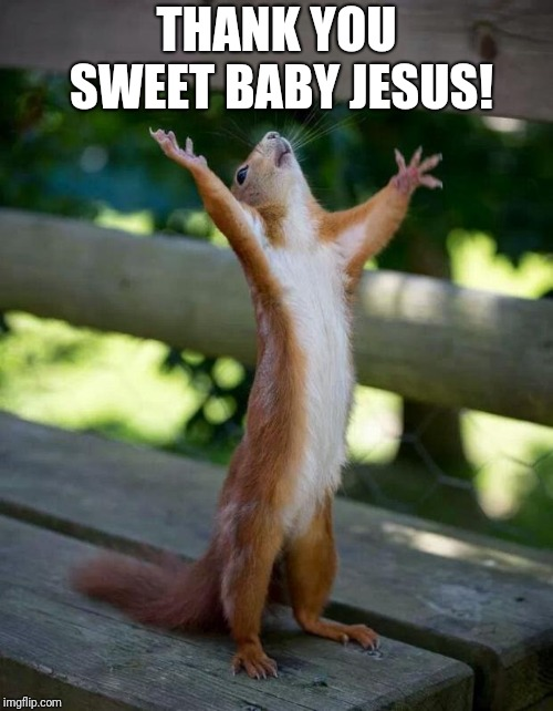 Happy Squirrel | THANK YOU SWEET BABY JESUS! | image tagged in happy squirrel | made w/ Imgflip meme maker