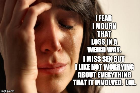 First World Problems Meme | I FEAR I MOURN THAT LOSS IN A WEIRD WAY. I MISS SEX BUT I LIKE NOT WORRYING ABOUT EVERYTHING THAT IT INVOLVED.  LOL. | image tagged in memes,first world problems | made w/ Imgflip meme maker