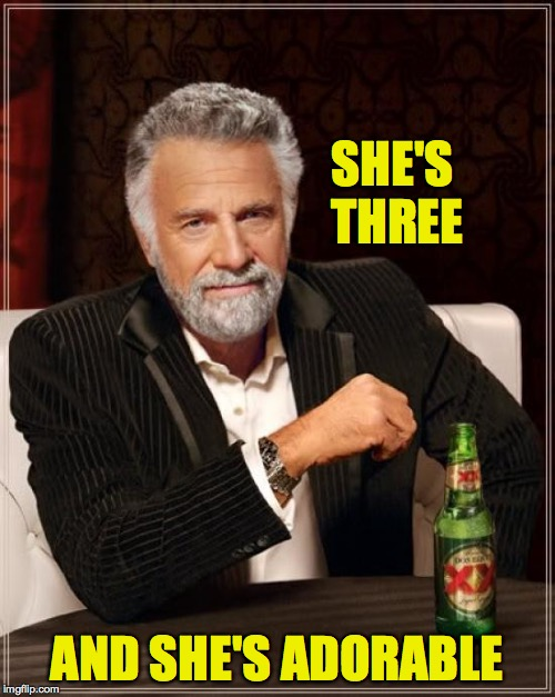 The Most Interesting Man In The World Meme | SHE'S THREE AND SHE'S ADORABLE | image tagged in memes,the most interesting man in the world | made w/ Imgflip meme maker
