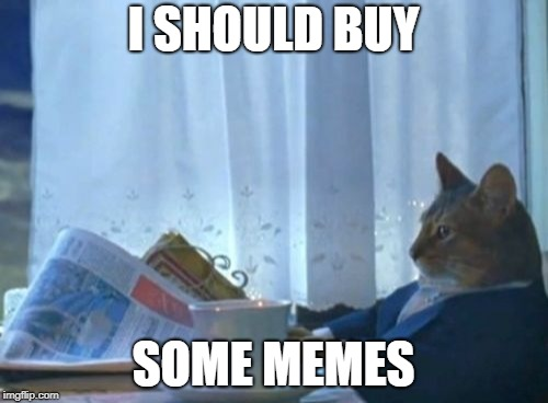 Shout out to Gumby2018 | I SHOULD BUY SOME MEMES | image tagged in memes,i should buy a boat cat,funny memes,meme | made w/ Imgflip meme maker