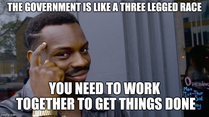 I ran out of submissions in the political stream | THE GOVERNMENT IS LIKE A THREE LEGGED RACE YOU NEED TO WORK TOGETHER TO GET THINGS DONE | image tagged in memes,roll safe think about it,politics,government | made w/ Imgflip meme maker