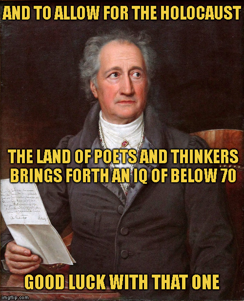 Goethe  | AND TO ALLOW FOR THE HOLOCAUST GOOD LUCK WITH THAT ONE THE LAND OF POETS AND THINKERS   BRINGS FORTH AN IQ OF BELOW 70 | image tagged in goethe | made w/ Imgflip meme maker