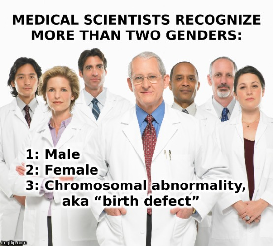 More than two genders | . | image tagged in 2 genders | made w/ Imgflip meme maker