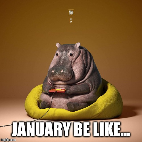 January be like... | JANUARY BE LIKE... | image tagged in january,happy new year,memes,funny memes | made w/ Imgflip meme maker