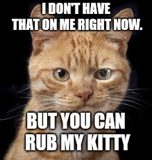 I DON'T HAVE THAT ON ME RIGHT NOW. BUT YOU CAN RUB MY KITTY | image tagged in smirking cat | made w/ Imgflip meme maker