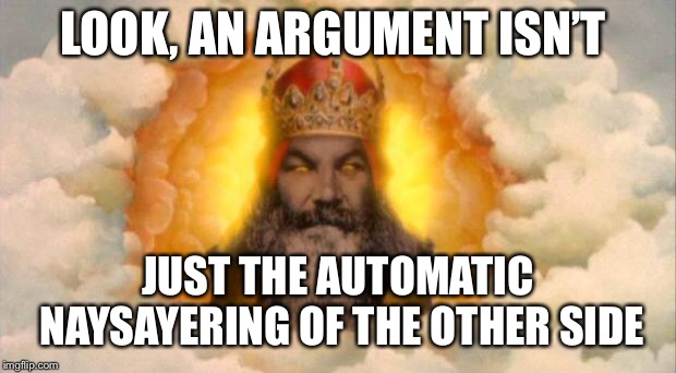 monty python god | LOOK, AN ARGUMENT ISN'T JUST THE AUTOMATIC NAYSAYERING OF THE OTHER SIDE | image tagged in monty python god | made w/ Imgflip meme maker