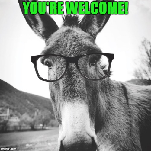 smart ass | YOU'RE WELCOME! | image tagged in smart ass | made w/ Imgflip meme maker
