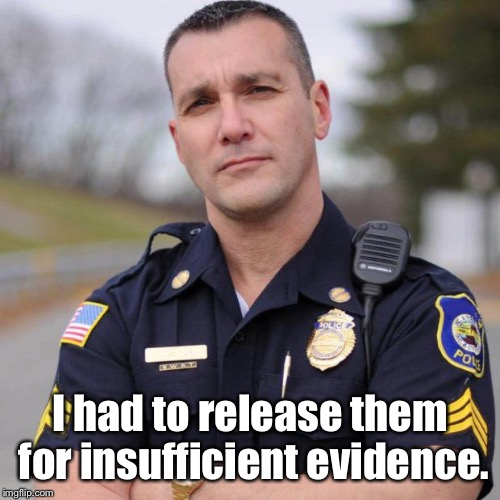 Cop | I had to release them for insufficient evidence. | image tagged in cop | made w/ Imgflip meme maker