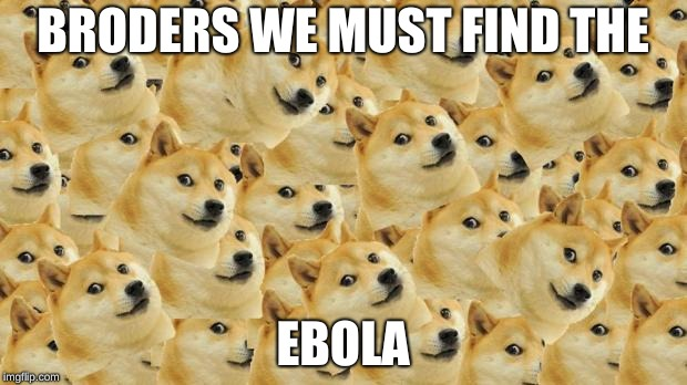 Multi Doge | BRODERS WE MUST FIND THE EBOLA | image tagged in memes,multi doge | made w/ Imgflip meme maker