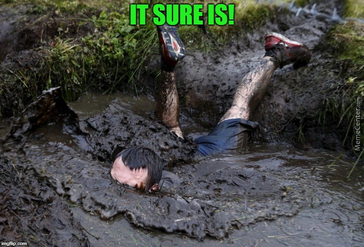 Mud flop | IT SURE IS! | image tagged in mud flop | made w/ Imgflip meme maker