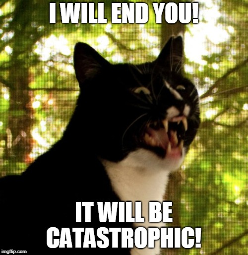 PSYCHO CAT | I WILL END YOU! IT WILL BE CATASTROPHIC! | image tagged in psycho cat | made w/ Imgflip meme maker