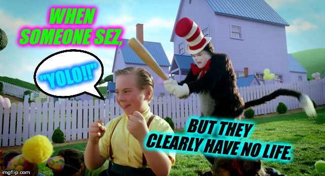 "Cat in the hat with a bat. (______ Colorized) | WHEN SOMEONE SEZ, ""YOLO!!"" BUT THEY CLEARLY HAVE NO LIFE. 