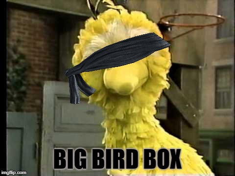 Now that's too much! | BIG BIRD BOX | image tagged in big bird,funny,joke,bird box,netflix | made w/ Imgflip meme maker