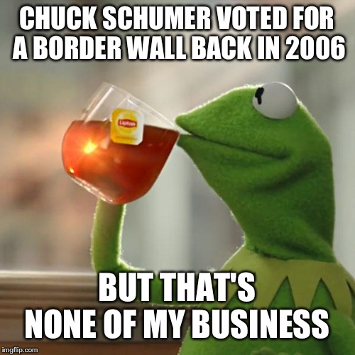 But Thats None Of My Business Meme | CHUCK SCHUMER VOTED FOR A BORDER WALL BACK IN 2006 BUT THAT'S NONE OF MY BUSINESS | image tagged in memes,but thats none of my business,kermit the frog | made w/ Imgflip meme maker