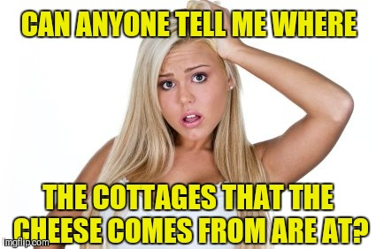 Dumb Blonde | CAN ANYONE TELL ME WHERE THE COTTAGES THAT THE CHEESE COMES FROM ARE AT? | image tagged in dumb blonde,cottage cheese,stupid,funny,grocery store,food | made w/ Imgflip meme maker