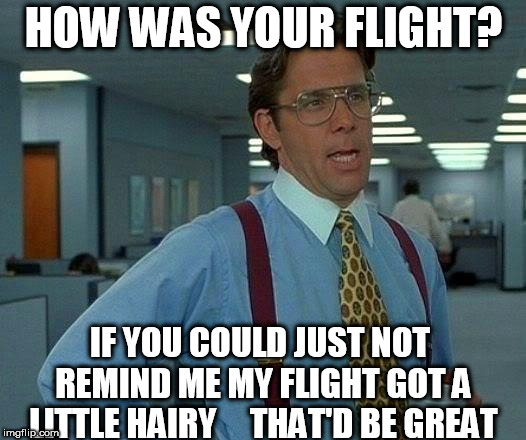 I guess he sat next to  michael obama on his flight. | HOW WAS YOUR FLIGHT? IF YOU COULD JUST NOT REMIND ME MY FLIGHT GOT A LITTLE HAIRY     THAT'D BE GREAT | image tagged in memes,that would be great,innotrode,lumberg | made w/ Imgflip meme maker