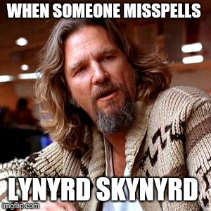 Confused Lebowski | WHEN SOMEONE MISSPELLS LYNYRD SKYNYRD | image tagged in memes,confused gandalf,confused | made w/ Imgflip meme maker