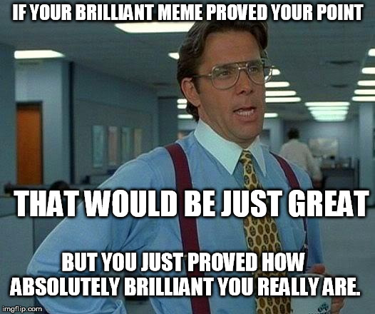 That Would Be Great Meme | IF YOUR BRILLIANT MEME PROVED YOUR POINT THAT WOULD BE JUST GREAT BUT YOU JUST PROVED HOW ABSOLUTELY BRILLIANT YOU REALLY ARE. | image tagged in memes,that would be great | made w/ Imgflip meme maker