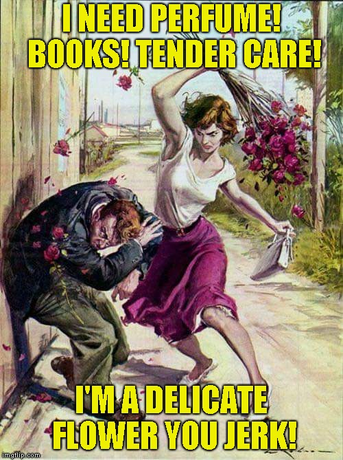 Beaten with Roses | I NEED PERFUME! BOOKS! TENDER CARE! I'M A DELICATE FLOWER YOU JERK! | image tagged in beaten with roses | made w/ Imgflip meme maker