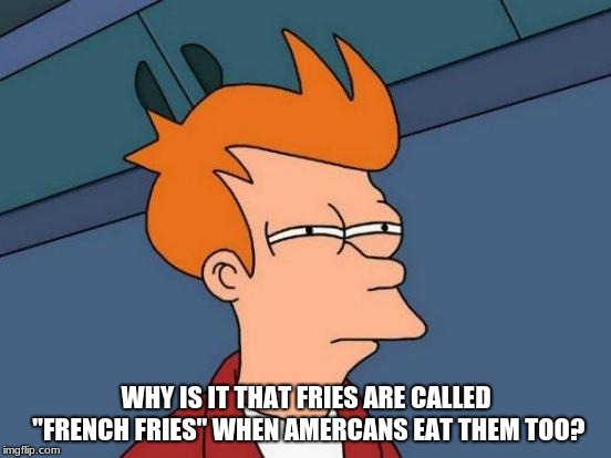 "Futurama Fry Meme | WHY IS IT THAT FRIES ARE CALLED ""FRENCH FRIES"" WHEN AMERCANS EAT THEM TOO? 