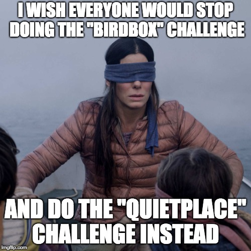 "Bird Box | I WISH EVERYONE WOULD STOP DOING THE ""BIRDBOX"" CHALLENGE AND DO THE ""QUIETPLACE"" CHALLENGE INSTEAD 