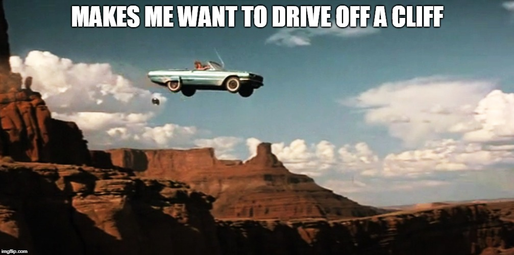 Thelma and Louise Airborne | MAKES ME WANT TO DRIVE OFF A CLIFF | image tagged in thelma and louise airborne | made w/ Imgflip meme maker
