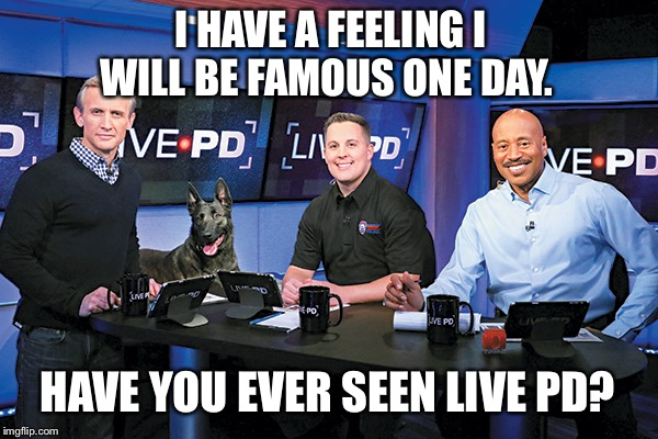 I HAVE A FEELING I WILL BE FAMOUS ONE DAY. HAVE YOU EVER SEEN LIVE PD? | image tagged in live pd | made w/ Imgflip meme maker